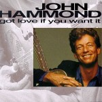 John Hammond Got Love If You Want It