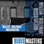 Walter Wolfman Washington blues masters