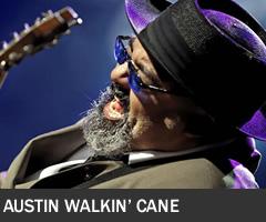 Austin Walkin Cane 240x200