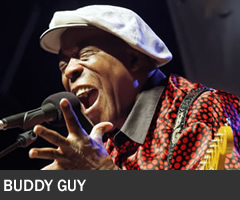 Buddy Guy 240x200